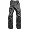 The North Face Freedom Pant Asphlat Grey Xxl/short