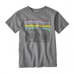 Patagonia Fitz Roy Skies Organic T-Shirt - Girls' 12M Gravel Heather