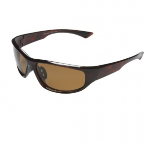 Coyote Sunglasses Baja