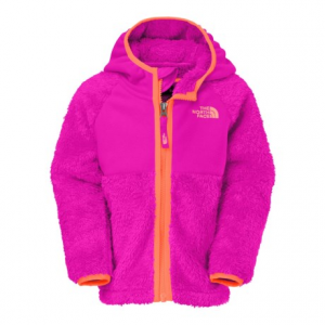 The North Face Chimboraza Hoodie