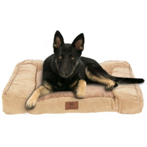 Image of AKC Premium Memory-Foam Dog Sofa
