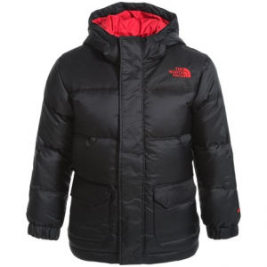 Image of The North Face Harlan Down Parka - 550 Fill Power (For Toddler Boys)