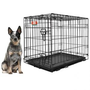 Image of Animal Planet Metal Dog Crate - 36x23x25?