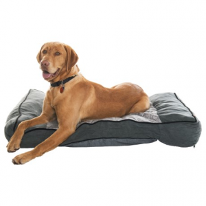 Image of Animal Planet Cuddle Me Memory-Foam Sofa Dog Bed - 40x27?