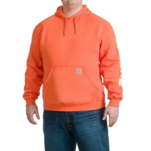 Image of Carhartt Block Graphic Logo Hoodie - Factory Seconds (For Men)