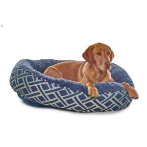 Image of Arlee Valkaria Dunkin Dog Bed - 36x30?