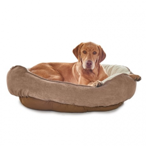 Image of Arlee Tempi Cuddler Dog Bed - 38x39?