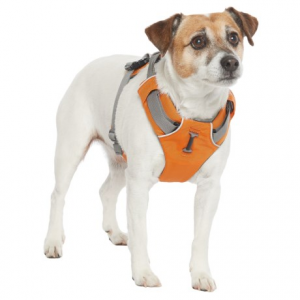 Image of Ruffwear Front Range Dog Harness