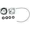 Sierra Lower Unit Seal Kit for Johnson/Evinrude Outboard Motors, replaces: OMC 396352
