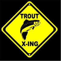 Trout X ing Fly Fishing Sign