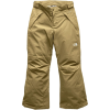 The North Face Freedom Insulated Pant   Girls'